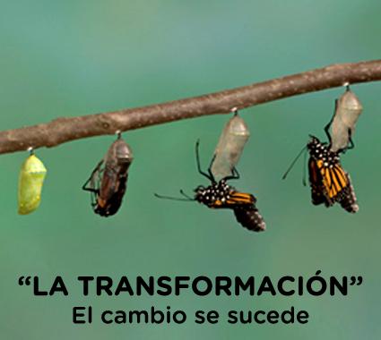 la transformación - nivel 2
