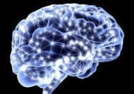 cerebro light